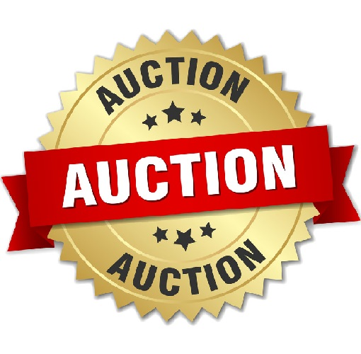 auctiongold-clickdomain.ir_.jpg