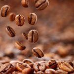 coffeekoo-by-clickdomain.ir_.jpg