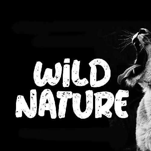 wild_nature-by-clickdomain.ir_.jpg